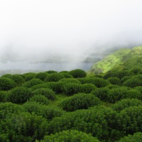 Torna - Highest Peak in Pune District