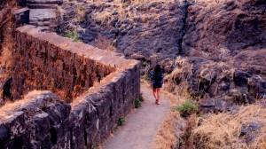 A walk through Sinhagad