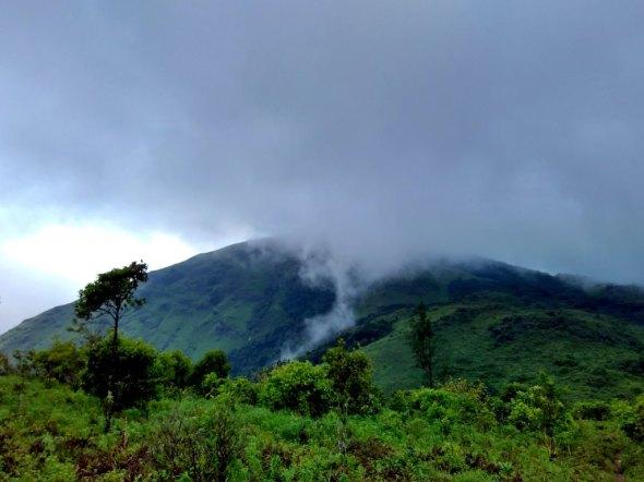 Journey to the peak