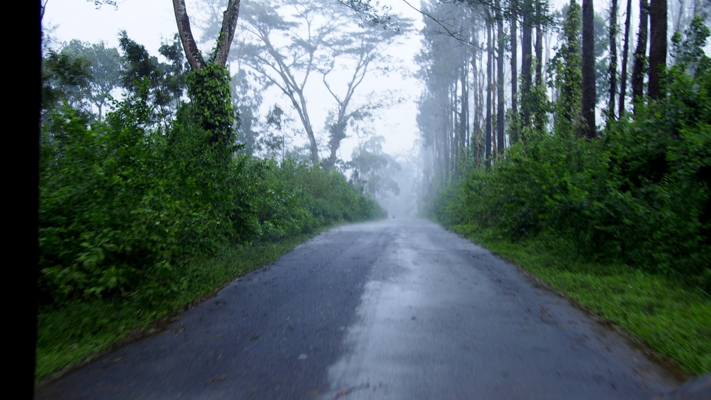 The mystic roads of Coorg
