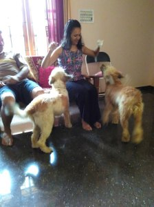With Paatu and Scooby