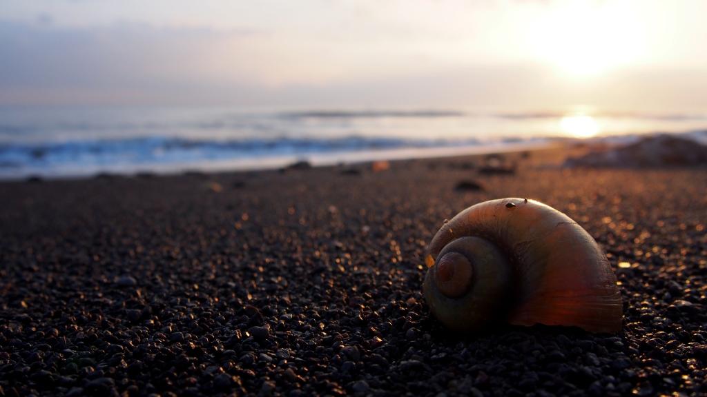 Seririt Beach